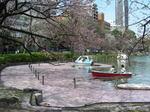 上野の桜'08 4月その2